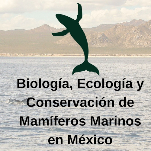 Estudio y Conservación de Grandes Mamíferos