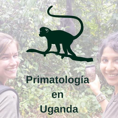 Curso de Primatología en Uganda